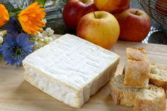 Tray with pont eveque cheese with bread and apples Stock Images