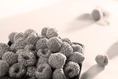 Tray of raspberries Royalty Free Stock Images