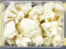Tray with raw cauliflower for freezing. Stocking up vegetables for winter storage in plastic container. Overhead view Stock Images