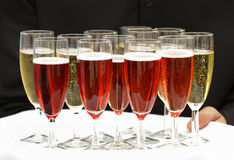 Try of sparkling wine. A tray of red and white sparkling wine royalty free stock image