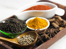 Tray of spices Stock Photography
