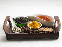 Tray of spices Royalty Free Stock Image