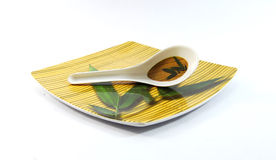 Tray and Spoon royalty free stock image