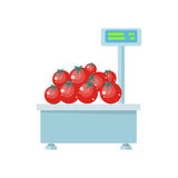 Tray with Tomatoes on Store Scales Vector. Royalty Free Stock Photo
