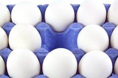 Tray of white eggs Stock Photo
