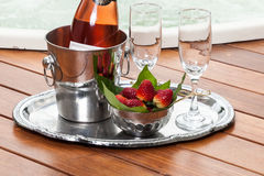 Tray with wine bottle, wine glasses Stock Images