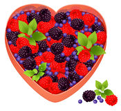 Tray With Berries Stock Images