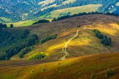 Trayectoria abajo de la ladera herbosa al valle Imagen de archivo