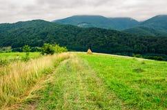 Trayectoria abajo del campo rural en la ladera Foto de archivo