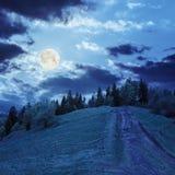 Trayectoria al bosque de la montaña en luz de luna Imágenes de archivo libres de regalías