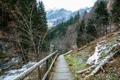 Trayectoria al lado de un río en las montañas Imágenes de archivo libres de regalías