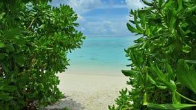 Trayectoria al océano en los Maldivas Fotografía de archivo libre de regalías