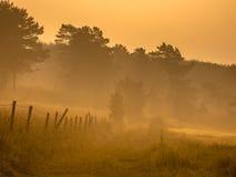 Trayectoria anaranjada de la salida del sol Fotos de archivo libres de regalías