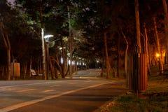 Trayectoria cambiante de la bici en un parque de la ciudad, en la noche, iluminada por los polos ligeros del parque Parque de Ale fotografía de archivo