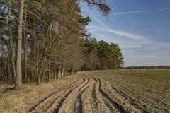 Trayectoria cerca del bosque y campo en Bohemia del norte Fotos de archivo libres de regalías