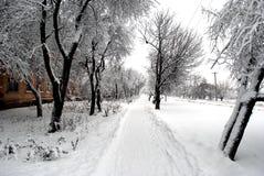 Trayectoria cubierta con nieve imagen de archivo libre de regalías