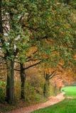 Trayectoria de Autumn Park fotos de archivo libres de regalías