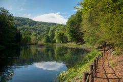 Trayectoria de bosque por el lago Jankovac en Forest Park Jankovac, naturaleza Foto de archivo