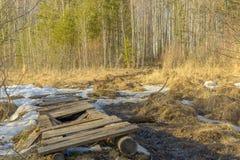 Trayectoria de bosque quebrada de la primavera a través del pantano en un día soleado Foto de archivo libre de regalías