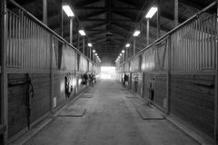 Trayectoria de centro a través del establo ecuestre del rancho del prado del caballo Imágenes de archivo libres de regalías
