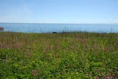 Trayectoria de Coastal del Fife Fotos de archivo