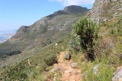 Trayectoria de Footh en de la tabla de la montaña del parque nacional de la naturaleza el viaje de Ciudad del Cabo África al aire Fotografía de archivo libre de regalías