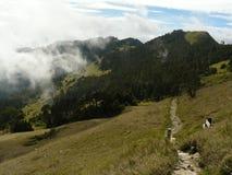 Trayectoria de la alta montaña -- Taiwán central Fotografía de archivo libre de regalías