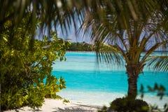 Trayectoria de la arena al paraíso en los Maldivas Imágenes de archivo libres de regalías