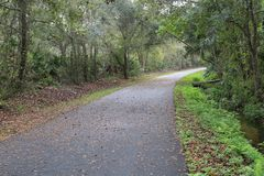 Trayectoria de la bici con las hojas caidas después de lluvia foto de archivo