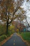 Trayectoria de la bici del greenway de NYC a través del fuerte Washington Park en un au oscuro Fotografía de archivo libre de regalías