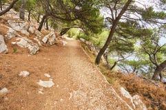 Trayectoria de la grava en bosque cerca del mar adriático Fotos de archivo