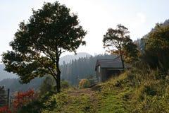 Trayectoria de la montaña en luz del otoño Foto de archivo