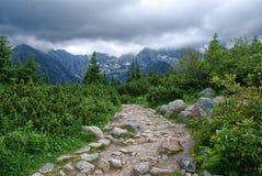Trayectoria de la montaña en Tatry en Polonia imágenes de archivo libres de regalías