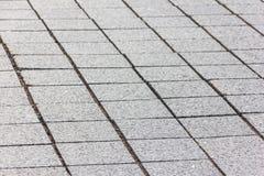 Trayectoria de la piedra de pavimentación Imagenes de archivo