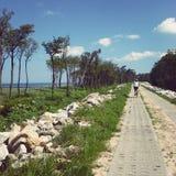 Trayectoria de la playa Foto de archivo libre de regalías