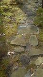 Trayectoria de la roca a través del bosque Fotos de archivo