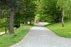Trayectoria de las piedras de pavimentación en un parque Imagen de archivo