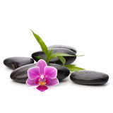 Trayectoria de los guijarros del zen. Balneario y concepto de la atención sanitaria. Fotografía de archivo libre de regalías