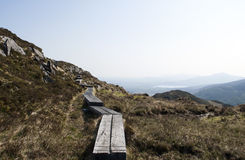 Trayectoria de madera en la cuesta de montaña Imagenes de archivo