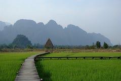 Trayectoria de madera en la hierba y las montañas Fotos de archivo