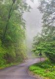 Trayectoria de niebla Foto de archivo libre de regalías