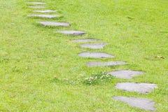 Trayectoria de piedra e hierba verde fotografía de archivo libre de regalías