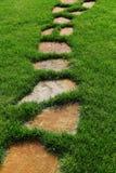Trayectoria de piedra en la hierba verde Imagen de archivo libre de regalías