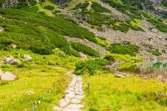 trayectoria de piedra para un paseo alrededor del lago Foto de archivo