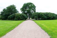 Trayectoria del camino de Streight con los árboles y los gras imágenes de archivo libres de regalías