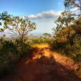 Trayectoria del camino de tierra entre los árboles en la montaña imágenes de archivo libres de regalías