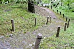 Trayectoria del carril de la calzada con los árboles verdes en Forest Beautiful Alley In Imagen de archivo