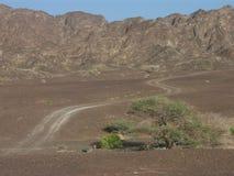 Trayectoria del desierto Imagen de archivo