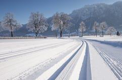 Trayectoria del esquí de fondo durante día de invierno soleado imágenes de archivo libres de regalías