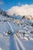 Trayectoria del esquí en mopuntains Imágenes de archivo libres de regalías